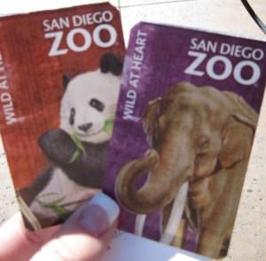 An Elephant and a Panda!!
