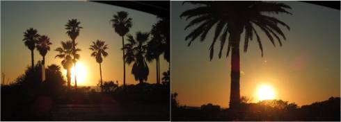 Sunset while Driving