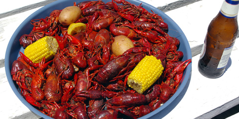 Yummmy Crawfish