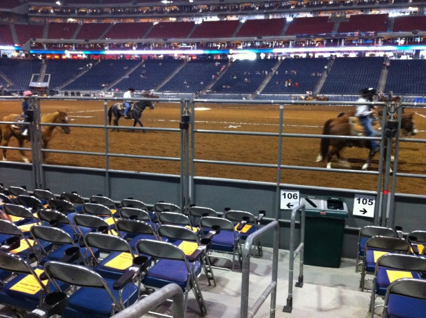 Rodeo Houston Action Seats Brokeasshome Com