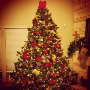 Big tree downstairs