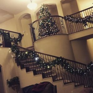 """Garland and  """"small"""" tree on our Juliet balcony"""