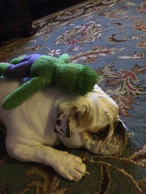 Addie and her Hulk Smash!